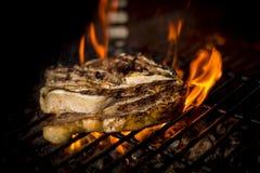 Мясо сваренное к огню Стоковая Фотография RF