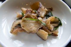 мясо тарелки Стоковая Фотография