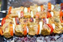 Мясо, томат и лук Стоковое фото RF