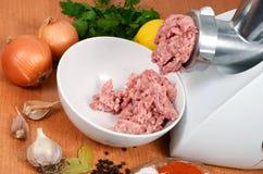 мясо точильщика forcemeat Стоковые Изображения RF