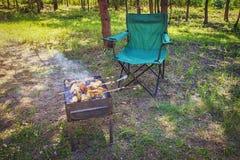 Мясо фрая на карте Kebabs Shish зажарены на гриле Летние каникулы на природе Стоковое фото RF