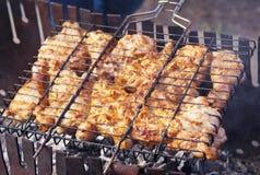 Мясо цыпленка, зажаренное в духовке на гриле стоковое фото rf