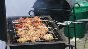 Мясо цыпленка на гриле барбекю Мясо зажарено в гриле барбекю Mangal Мясо цыпленка на гриле во время пикника видеоматериал