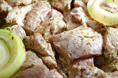 Мясо для барбекю Стоковая Фотография RF