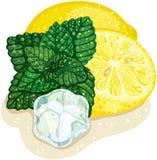 Мята и лимон Стоковые Изображения