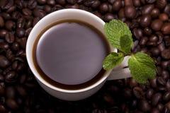 мята кофейной чашки Стоковое фото RF