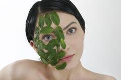 мята маски Стоковые Изображения RF