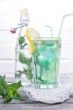 Мята питья, который нужно пробовать Стоковое Изображение