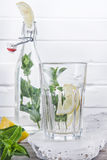Мята питья, который нужно пробовать Стоковое Фото