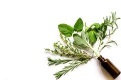 Мята, шалфей, розмариновое масло, тимиан - предпосылка белизны ароматерапии стоковые изображения rf