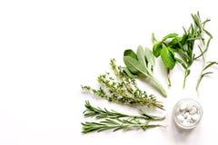 Мята, шалфей, розмариновое масло, тимиан - предпосылка белизны ароматерапии стоковые изображения