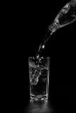 мята льда бутылочного стекла минеральная трясет воду Стоковая Фотография RF