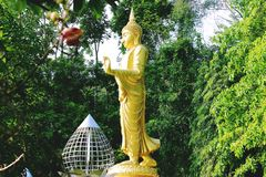 младенец Будда Стоковые Фото
