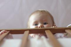 Младенец в вашгерде Стоковое Фото