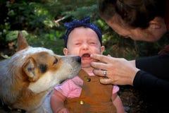 Младенец есть грязь стоковая фотография