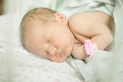 Младенец 5 дней старых стоковые изображения rf