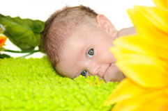Младенец немного месяцев с большими голубыми глазами Стоковая Фотография RF