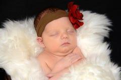 Младенец новорожденного в белом обруче Стоковая Фотография RF