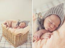 Младенец помадки спать newborn в плетеном корзин-коллаже Стоковая Фотография RF