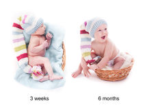 Младенец растет стоковое фото