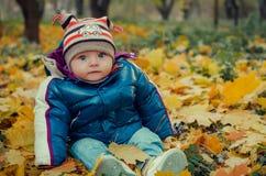 Младенец сидя в упаденных листьях Стоковые Фотографии RF