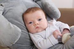 Младенец с слоном Стоковое фото RF