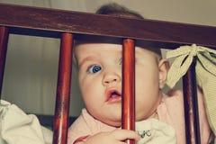 младенец любознательний Стоковое Фото