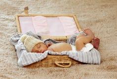 младенец newborn стоковая фотография rf