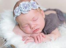 Младенческая девушка с цветистый спать hairband стоковые изображения rf