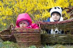 Младенческие дети в корзине Стоковое Фото