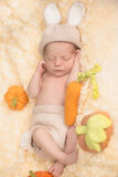 Младенческий мальчик в костюме кролика Стоковое Фото