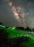 Млечный путь над террасой риса на провинции Nan, Таиланде Стоковая Фотография RF