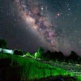 Млечный путь над террасой риса на провинции Nan, Таиланде Стоковое Изображение RF