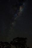 Млечный путь от моей задворк Стоковые Фотографии RF