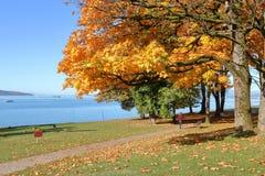 Набережная западного края ` s Ванкувера стоковое фото