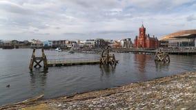 Набережная русалки на заливе Кардиффа стоковое изображение rf
