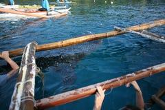 Наблюдать китовой акулы Oslob Стоковое Изображение RF
