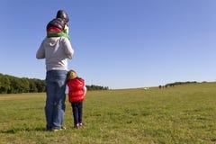наблюдать овец семьи Стоковые Изображения