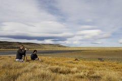 наблюдать птицы, Патагония, Аргентина стоковое фото