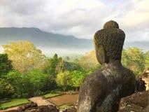 Наблюдая Будда Стоковое фото RF