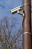 наблюдение камеры Стоковые Изображения RF