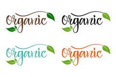 Набор био eco красочный для компании, производящ органические продукты бесплатная иллюстрация