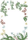Набор вектора флористический Графическое собрание с листьями и цветками, рисуя элементами Весна или дизайн лета для приглашения,  иллюстрация штока