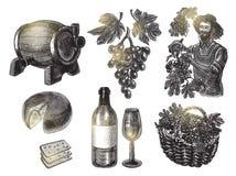 Набор виноградин сбора Иллюстрация вектора в стиле гравировки иллюстрация вектора