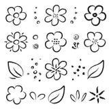 Набор цветков и листьев лета руки вычерченный черный иллюстрация штока