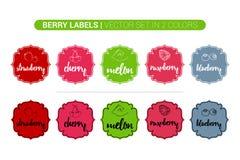 Набор ярлыка ягоды красочный клубники, вишни, дыни, поленики, голубики o иллюстрация вектора