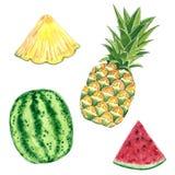 Набор clipart плода Ананас и арбуз, иллюстрация акварели иллюстрация вектора