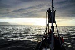 Наблюдатель кита на путешествии Стоковые Фото