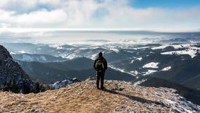 Наблюдать красивый ландшафт Стоковые Изображения RF