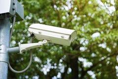 Наблюдение камеры слежения CCTV в парке Стоковое фото RF